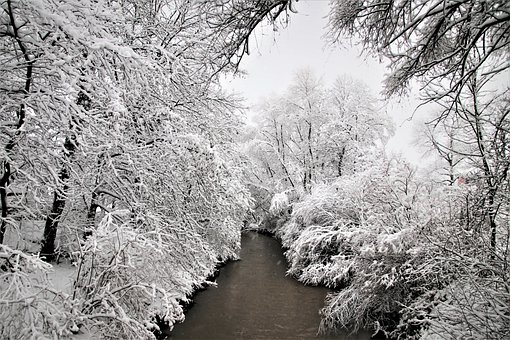 Winter, Snowy, White, Winter Landscape, Tree, River