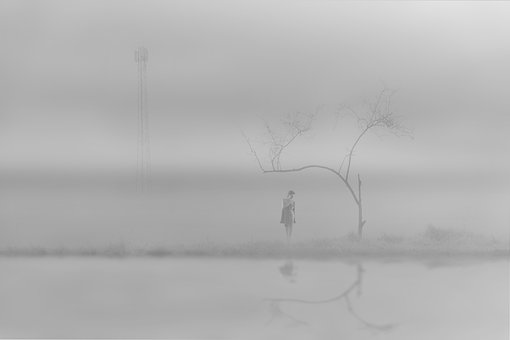 In The Fog, The Fog, In The Morning, Woman, Nature