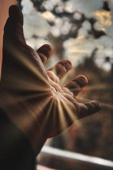 Hand, Wrist, Sunrays, Fingers, Palm, Open, Skin