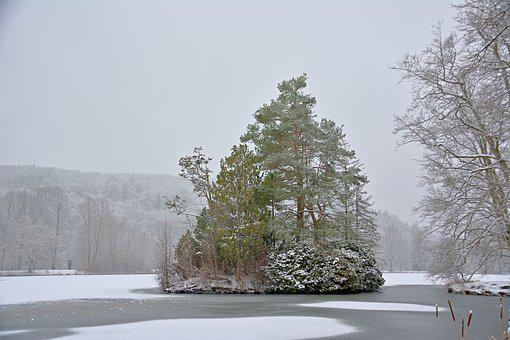 Island, Frozen Lake, Winter, Fog, Trees, Park, Snow