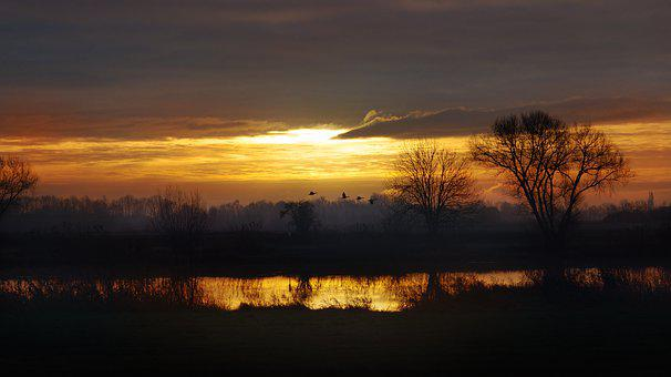 Sunrise, River, Trees, Fields, Bank, River Bank, Sunset