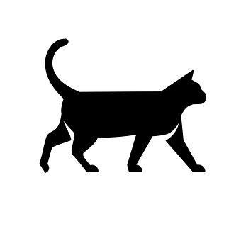 Cat, Meo, Cool, Kitty, Curious, Pet, Thinking, Kitten