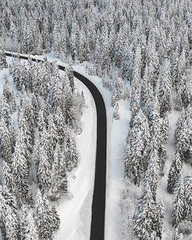 Drone, Winter, Landscape, Snow, Nature, Forest, Trees