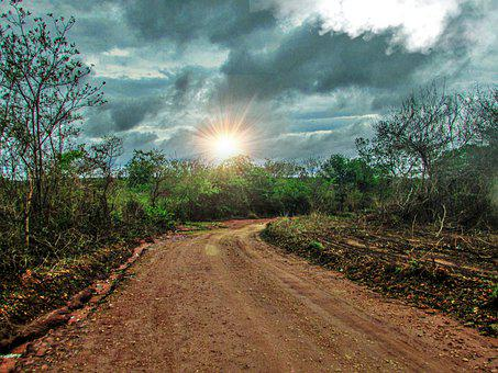 Road, Path, Earth