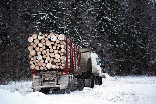 Forest, Truck, Lumberjacks, Logging, Forestry, Logs