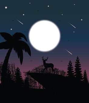 Deer, Cliff, Night, Silhouette, Forest, Trees, Moon