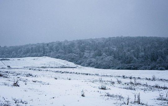 Snow, Mountains, Field, Snow Field, Hoarfrost, Snowy