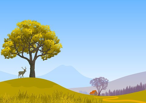 Deer, Hill, Rural, Tree, Meadow, Grass, Mountains, Sky