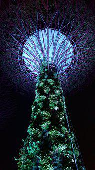 Do Gardens By The Bay, Singapore, Avatar