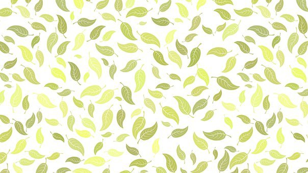 Leaves, Foliage, Pattern, Background, Nature, Green