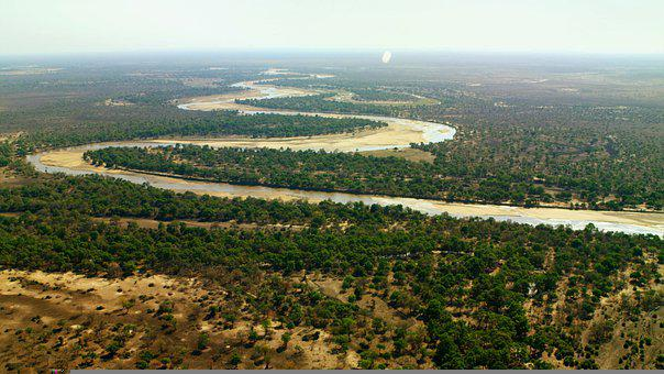 River, Aerial, Meander, Trees, Forests