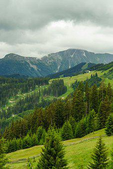 Mountains, Trees, Forest, Scene, Alps, Tirol, Austria