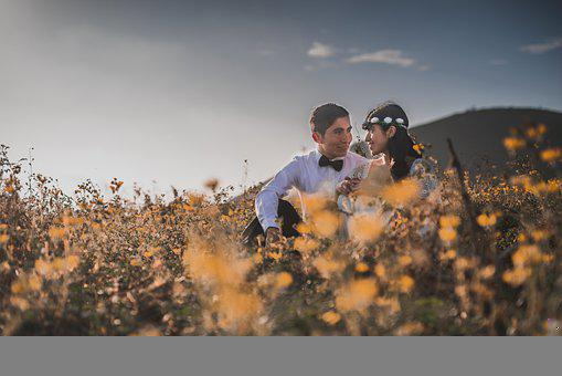 Wedding, Couple, Field, Happiness, Marriage, Happy, Man