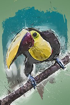 Toucan, Bird, Branch, Perched, Beak, Bill, Animal
