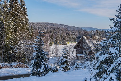 House, Cabin, Hut, Trees, Forest, Winter, Black Forest