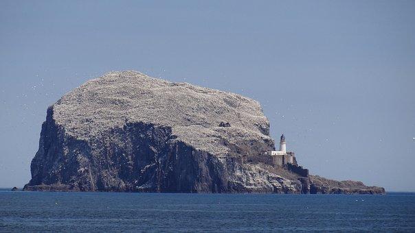 Bass Rock, Firth Of Forth, North Berwick, Scotland