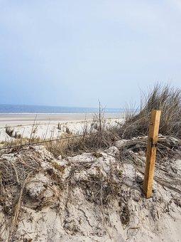Beach, Sand, Dunes, Beach Grass, Sea, Ocean, Sandy