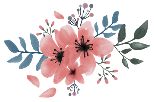 Sakura, Bouquet, Watercolor, Procreate, Pink, Flower