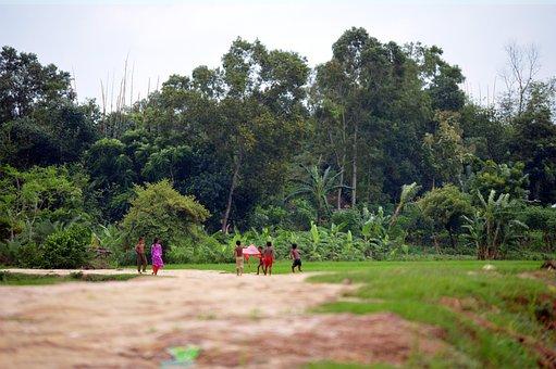 The Village, Bangladesh, Childhood, Nature, Road, Green