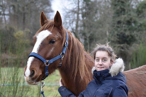 Horse And Rider, Horse Walker, Horse Kid, Ruminant