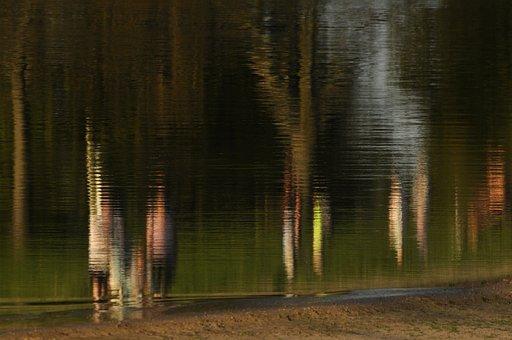 Reflections, Lake, Beach