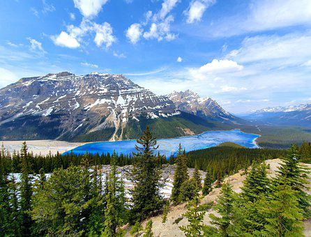 Canada, Peyto Lake, Mountains, Glacier, Bergsee, Lake