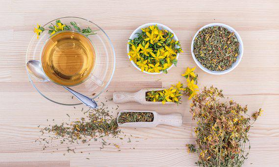 St John's Wort, Tee, Medicinal Herb, Nature, Flowers