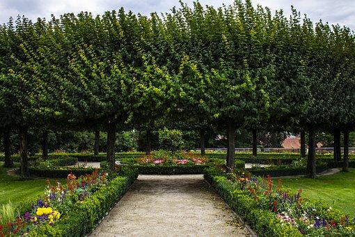 Park, Trees, Flowers, Spring, Nuremberg, Nature, Tree