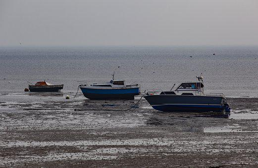 Tide Out, Tide, Boat, Low Tide, Mud, Shore