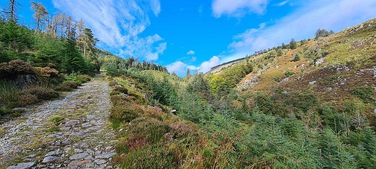 Wicklow, Ireland, Glenmalure, Nature, Landscape, Europe