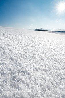 Snow, Field, Winter, Snowscape, Winterscape, Snowy