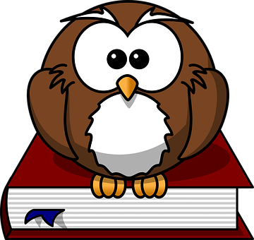 Owl, Bird, Book, Wise, Nature, Character, Wild, Wisdom