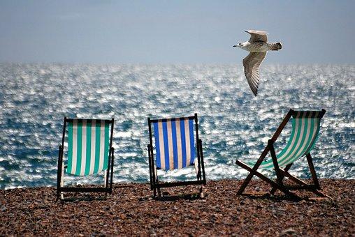 Deckchairs, Sea, Beach, Seaside, Seagull, Summer