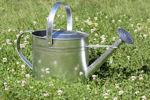 Watering Can, Sprinkler, Vessel, Casting, Shower