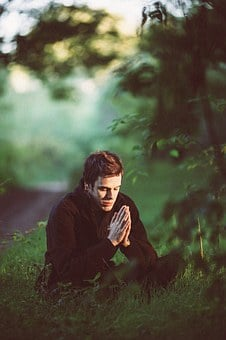 Meditation, Green, Pray, Forest, Young Man, Spiritual