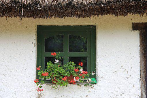 Window, Thatched Roof, Flower, Tanya, Farmhouse