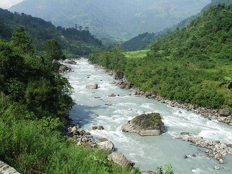 Nepal, Annapurna, Trekking, Forest, Summer, Mountains