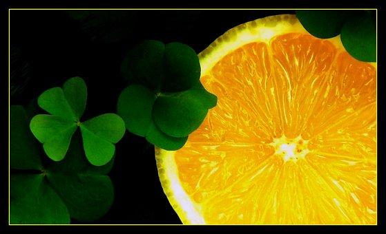 Four Leaf Clover, Lucky Charm, Klee, Luck