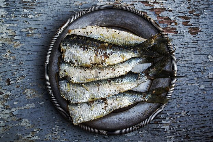 Sardines, Fish, Plated Food, Food, Grilled