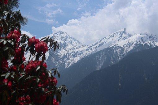 Nepal, Trekking, Nepal Trekking, Trek, Trekker, Snow