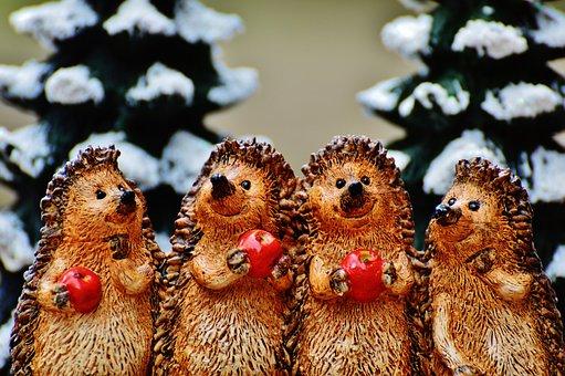 Winter, Hedgehog, Apple, Cute, Sweet, Fig, Wintry, Deco