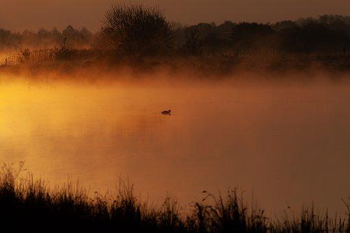Lake, Fog, Mist, Sunrise, Grass, Haze