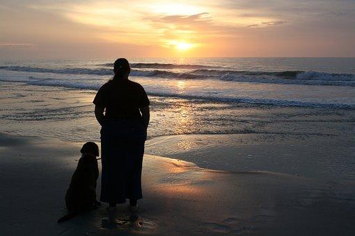Beach, Ocean, Sea, Water, Nature, Sunset, Sky, Wave