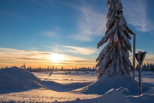 Winter, Snow, Landscape, Sky, Tree, Nature, Afterglow