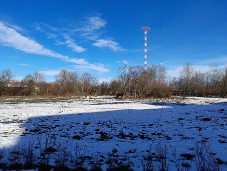 Meadow, Horses, Clouds, Winter, Heaven