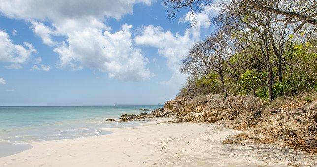 Martinique, Sea, Ocean, Beach, Island, France