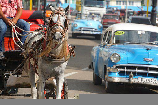 Horse, Carriage, Cars, City, Vintage, Classic, Auto