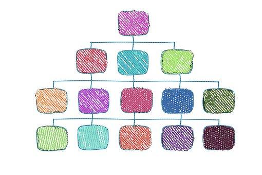 Organization Chart, Executive, Staff, Hierarchy, Work