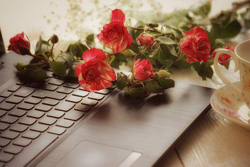 Roses, Relax, Computer, Technology, Online, Tea, Cup