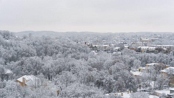 Town, Trees, Winter, Fog, Mist, Snow, Buildings, Urban